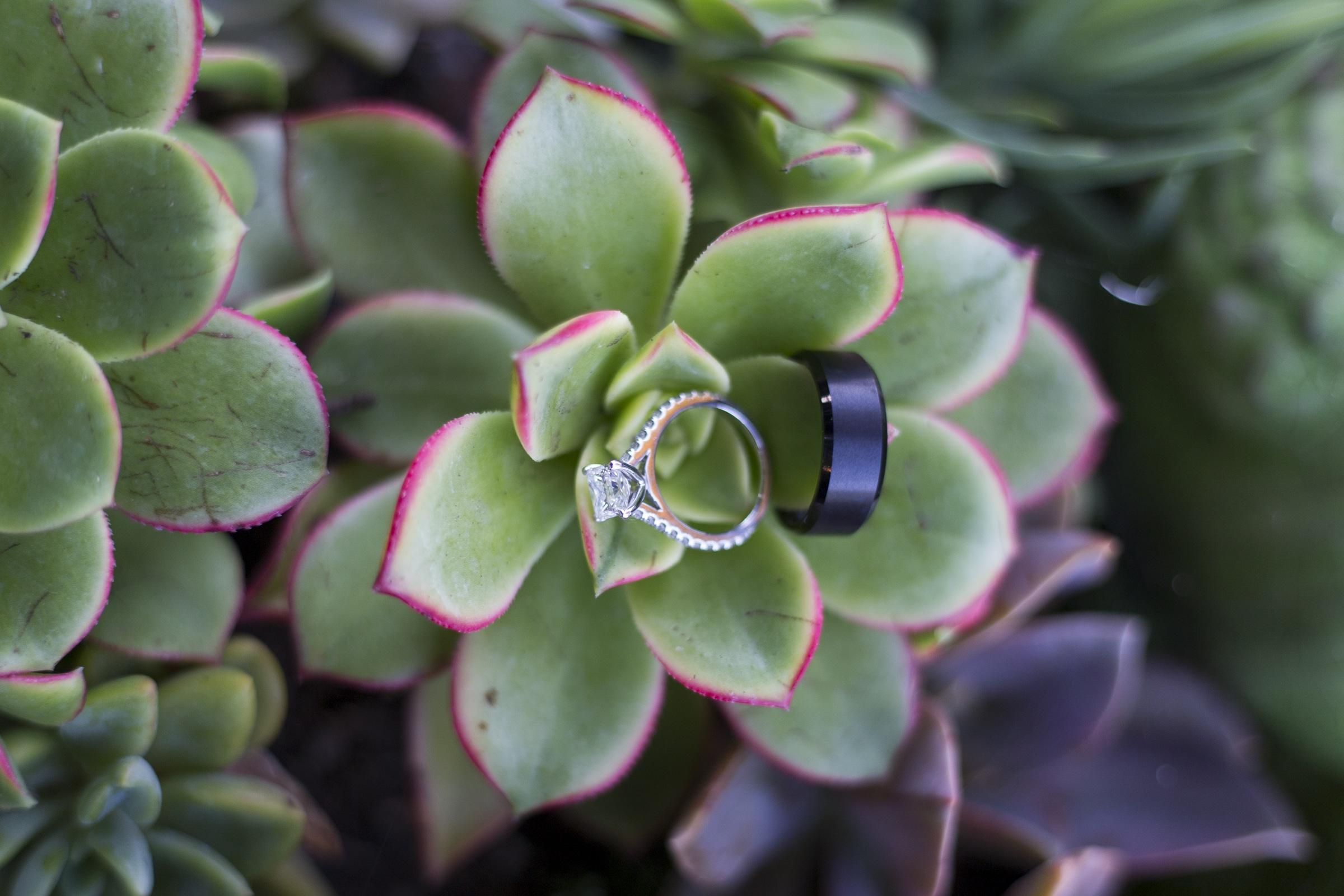 san-diego-botanical-gardens-wedding-1