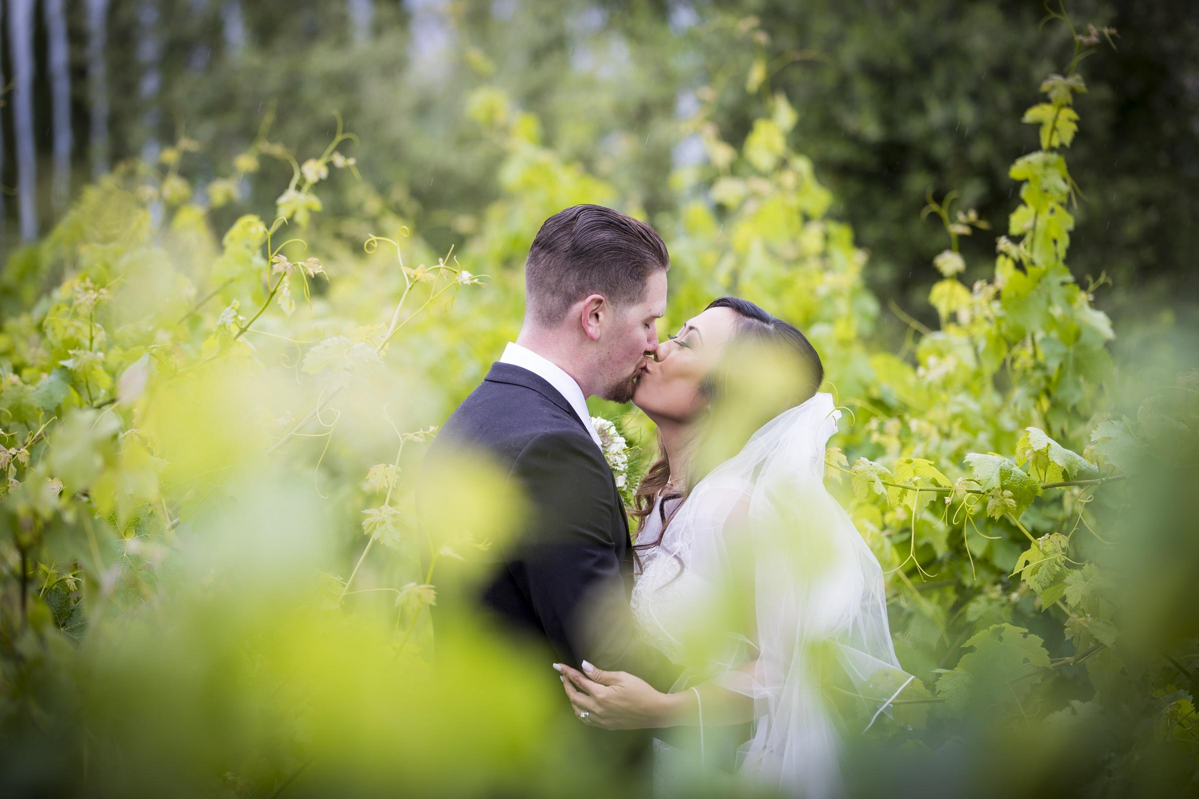 mount-palomar-winery-wedding-34
