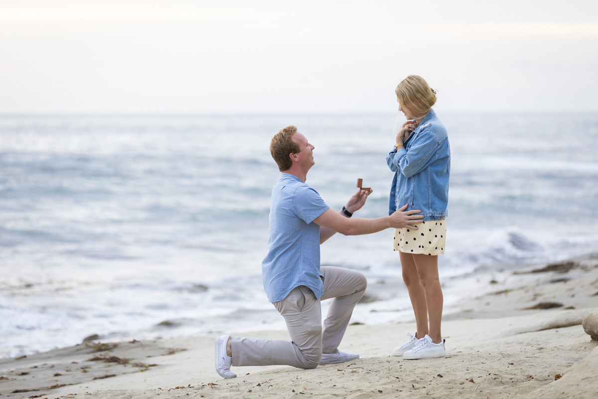surprise-engagement-proposal-3