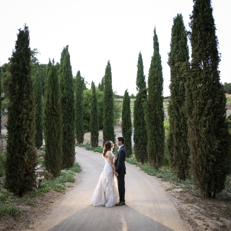 milagro-farm-winery-wedding-84