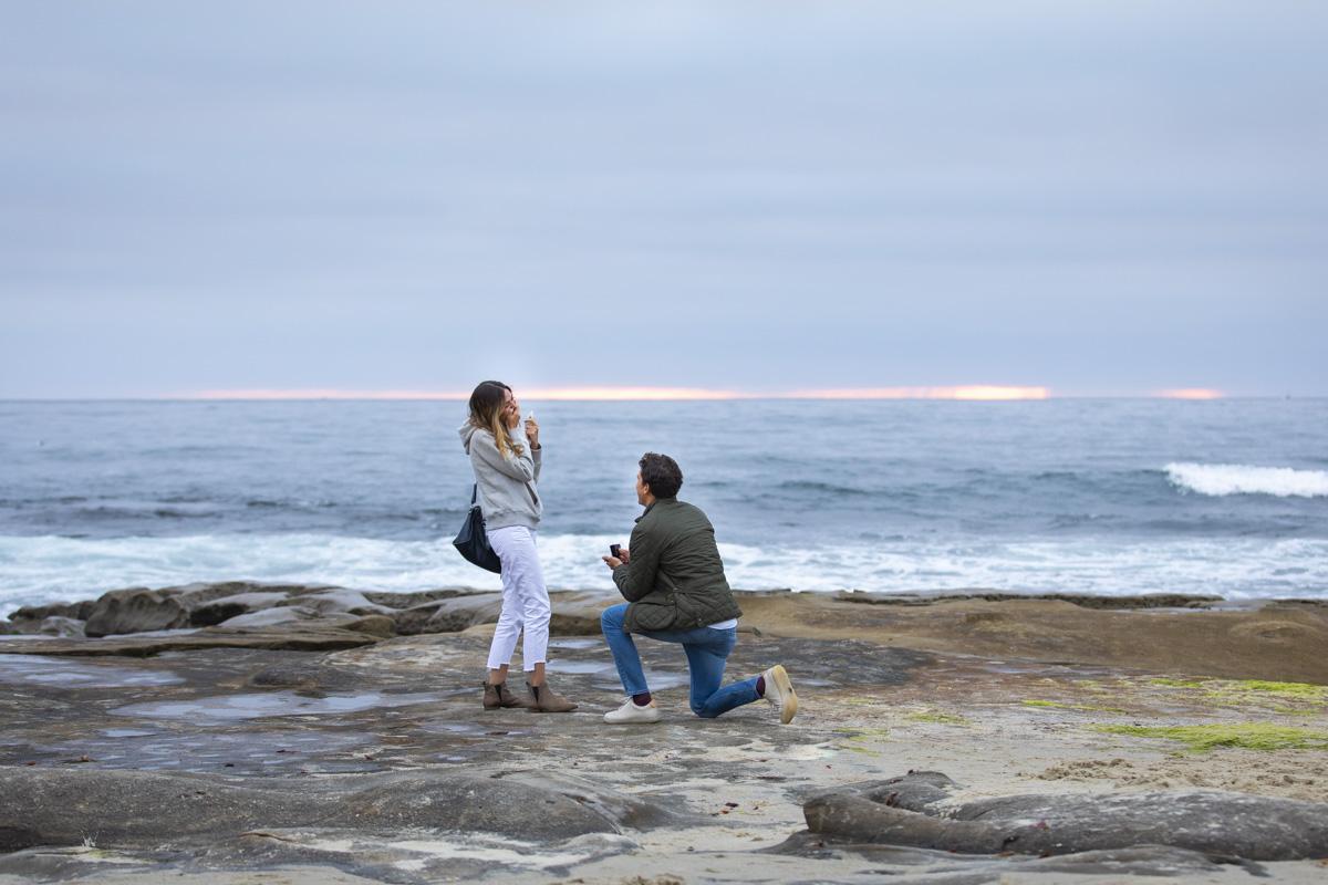 surprise-proposal-1