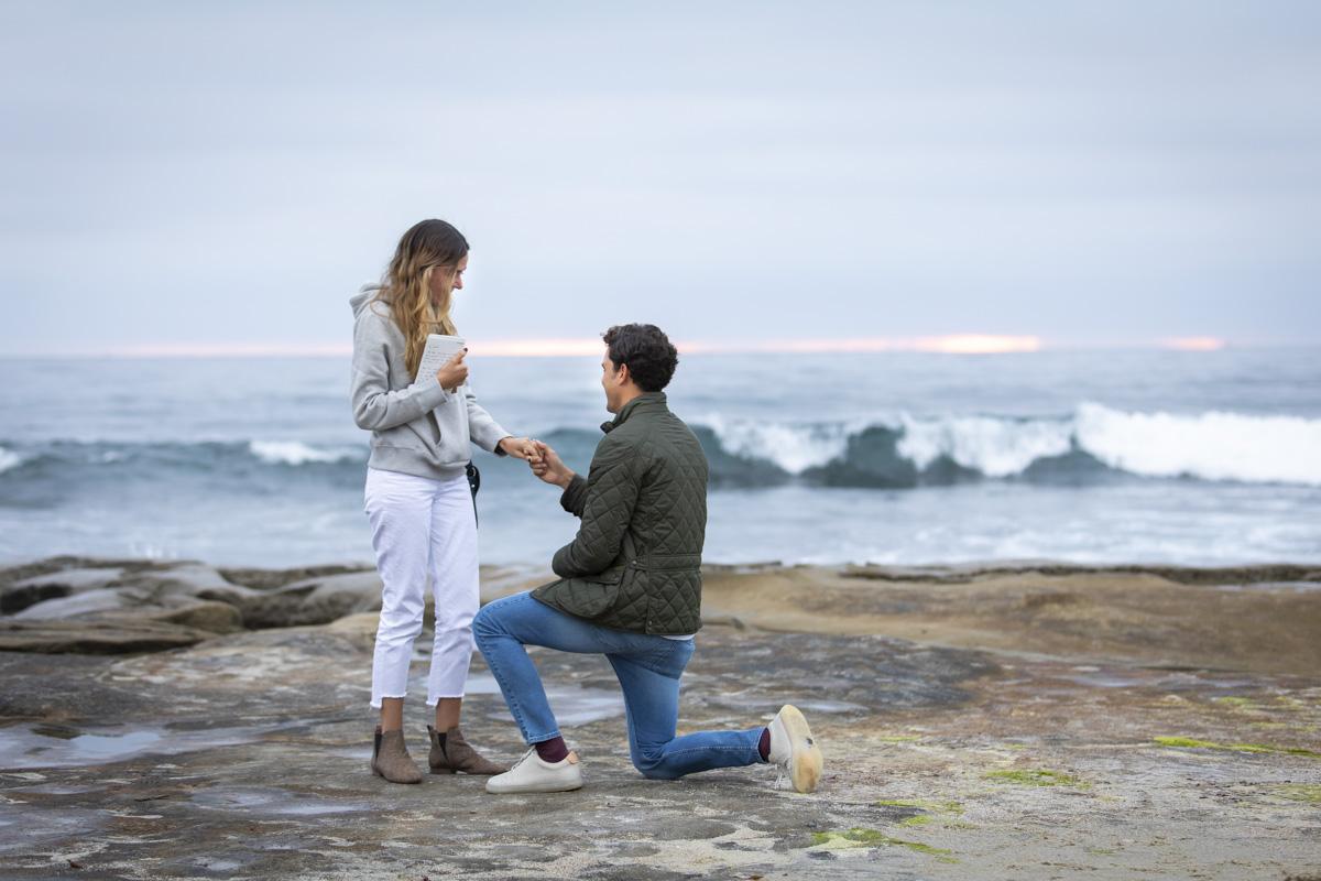 surprise-proposal-11
