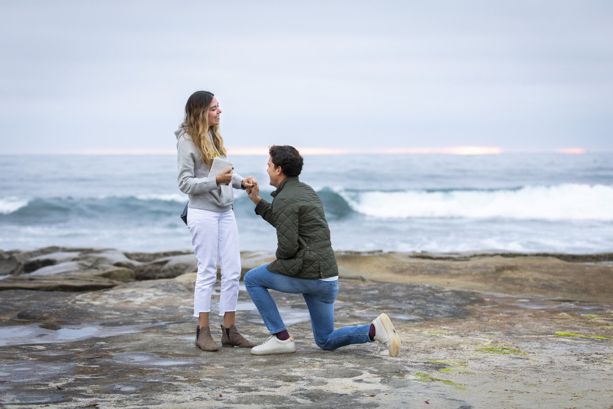 surprise-proposal-12
