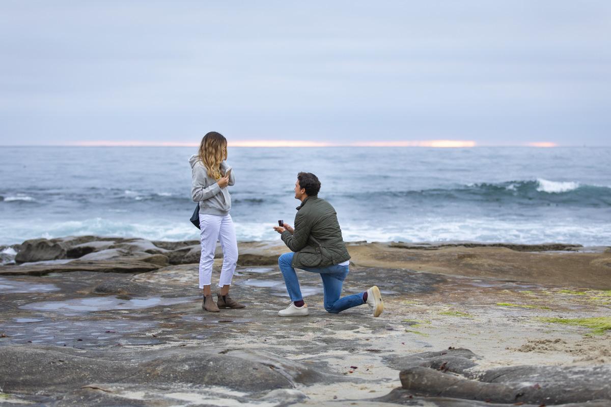 surprise-proposal-2