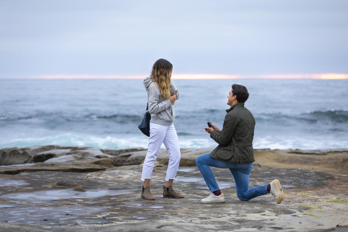 surprise-proposal-3