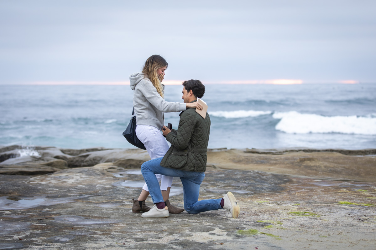 surprise-proposal-6