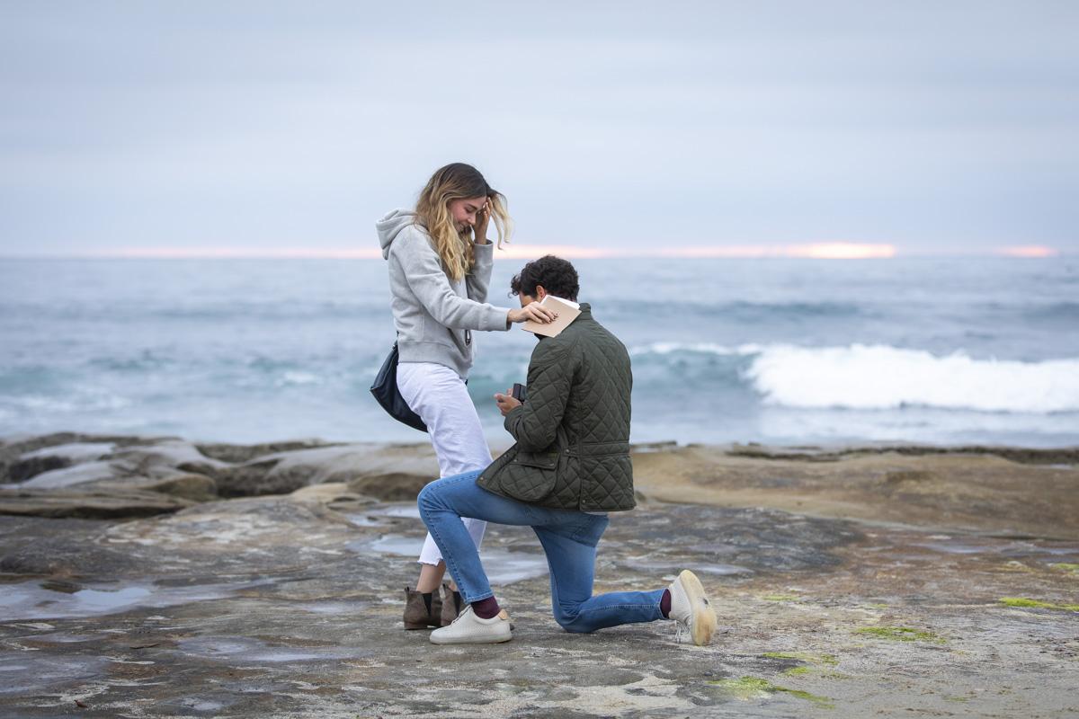 surprise-proposal-7