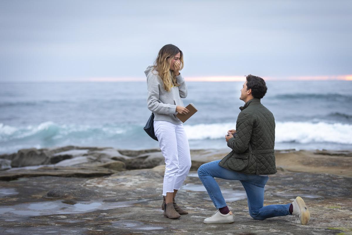 surprise-proposal-8