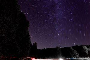 Palomar-2.jpg