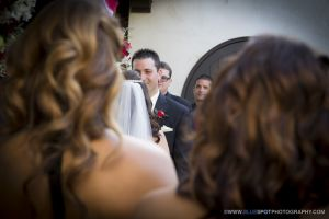 affordable wedgewood wedding photographer