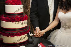 cake cutting wedgewood wedding photos