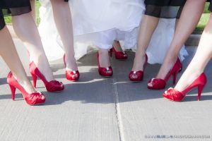 summer weddings wedgewood